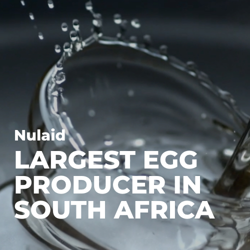 Our Work | Nulaid - Largest Egg Producer in South Africa